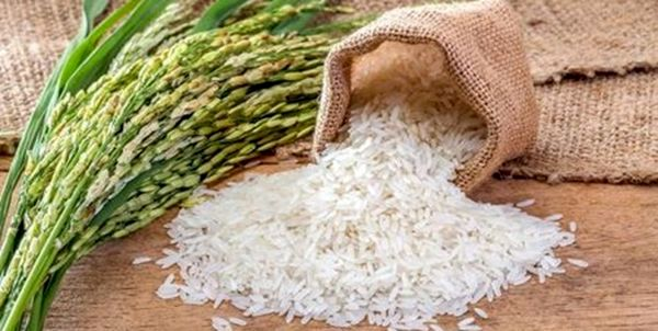 Over 100K Tons of Rice Cleared From Customs Since March 20