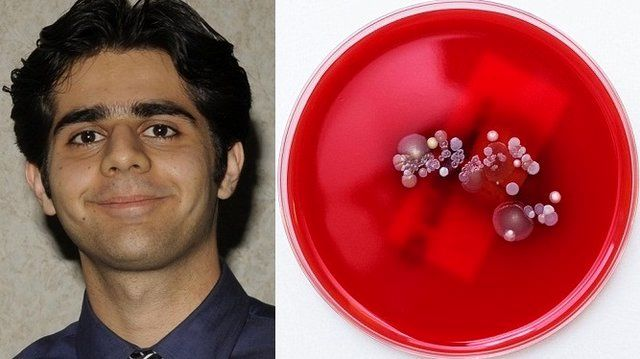 Iran scientist develops method to charge cell phone with bacteria