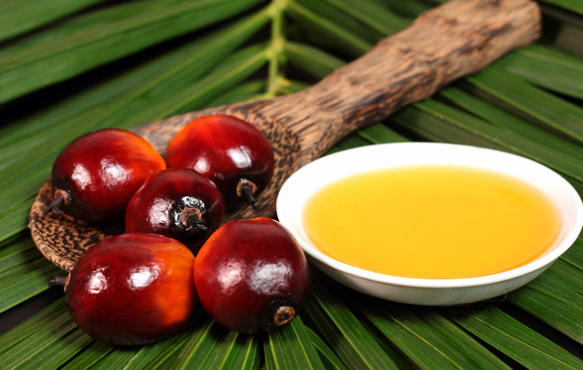 50% Rise in Palm Oil Imports