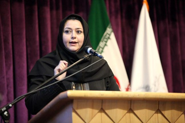 Iran Air CEO: No Problems Financing Plane Deals