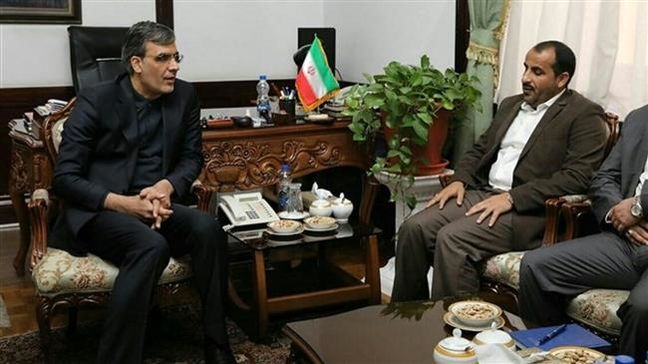Iranian, Ansarullah officials discuss political solution for Yemen, aid delivery