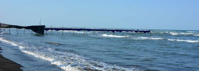 Caspian Sea Water Transfer Plan Carries Enormous Ecological Risk