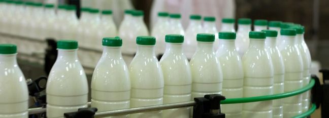 Dairy Exports Exceed $350m in 10 Months
