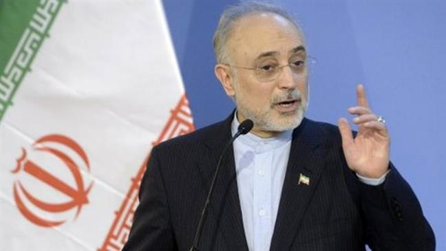 JCPOA will survive if West adheres to commitments: Iran nuclear chief