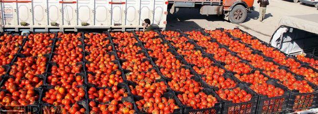 Iran Agrifood Trade Deficit Narrows