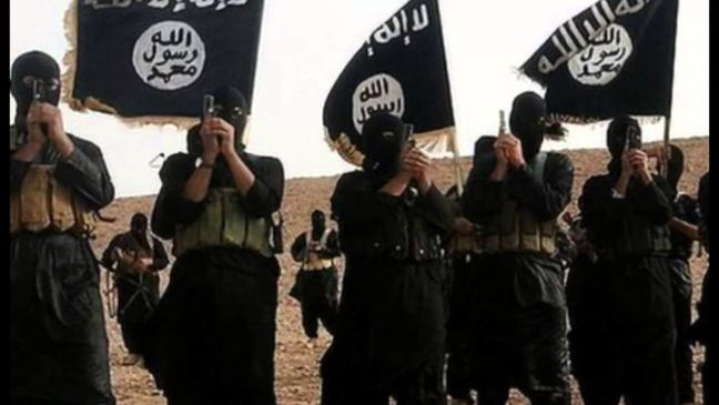Indian activist: Saudi Arabia is main supporter of Takfiri terrorists